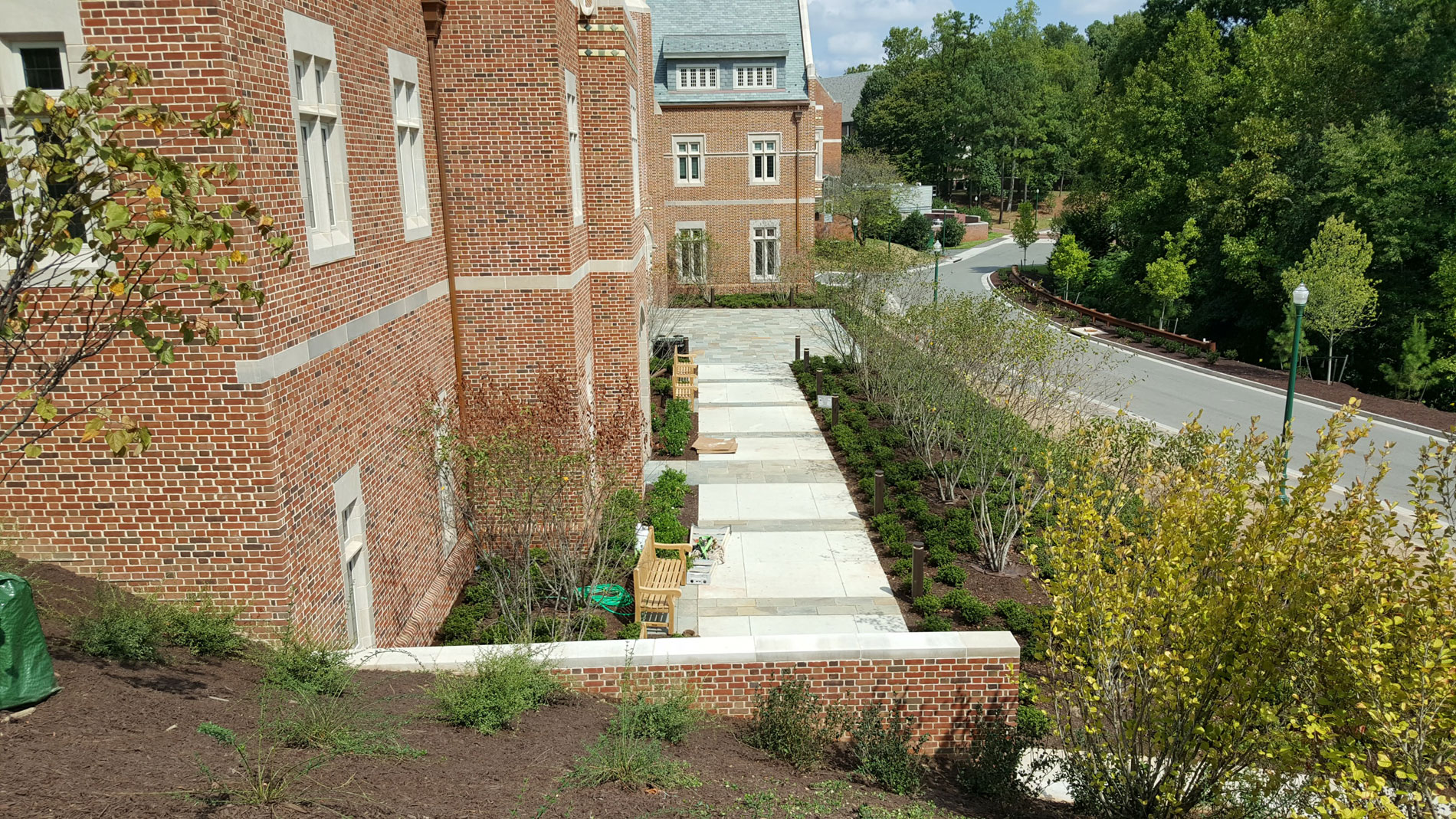 View from the top of the hillside garden showing the Amelanchier-lined walkway to the entry plaza.